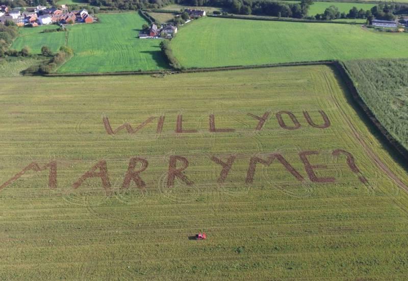 Homem pede namorada em casamento com mensagem escrita em plantação